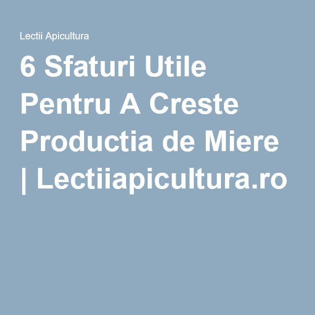 6 Sfaturi Utile Pentru A Creste Productia de Miere | Lectiiapicultura.ro