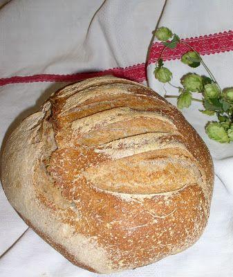 Erdőkóstoló: Komlós kovászos kenyér sütésének kísérletei, tapas...