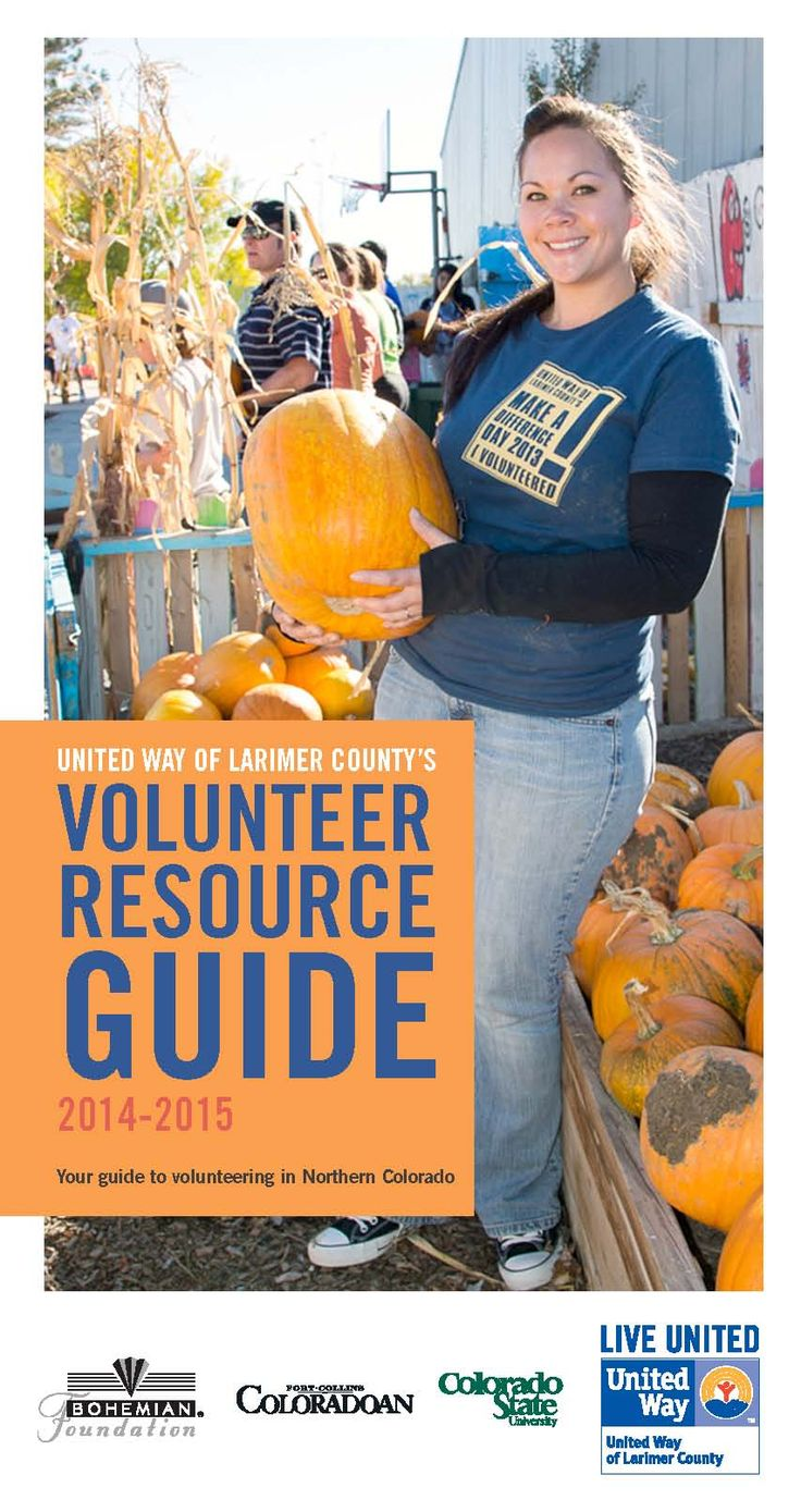 how to find volunteer work in nyc