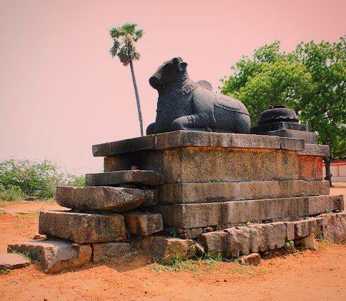 வடனசவன கவல Nandi statue at Vedal Shiva #temple is situated near the Vedal Lake one of the biggest lakes of #kanchipuram district this temple was built during the Raja Raja Chola period. The historical name of the village being Chola Kerala Chaturvedhi mangalam a village donated to the Brahmins for Vedic chanting. The temple is more ancient than 994 A.D perarchaeologicalfindings and is atreasure trove for the history lovers. It has many unique forms of different deities. The temple is a…