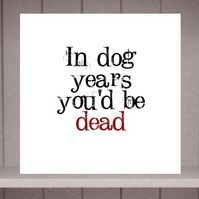 In dog years you'd be dead Birthday Card by Eskimo Circus