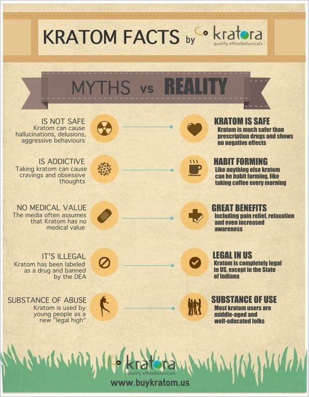 Common Myths about Kratom in a Cool Infographic by www.buykratom.us