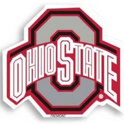 Ohio State Buckeyes NCAA 12 Car Magnet