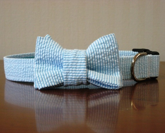 bow tie dogs collars