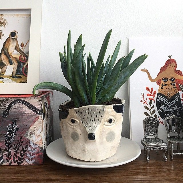 """Finally! My first porcelain plant pot is settled on my desk."" Mirdinara"