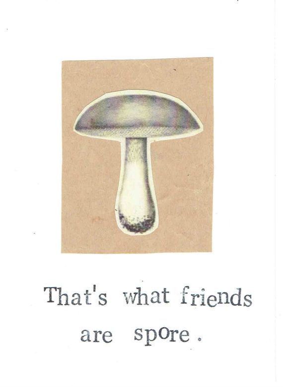 Funny Mushroom Biology Card, $3.00  ModDessert | Etsy A cute & nerdy way to keep in touch.