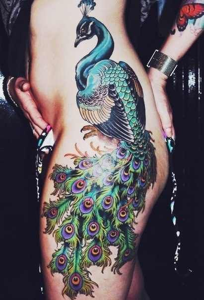 Colour! Vibrancy! Clarity without being too dark/cluttered. Good use of contrast.  traditional peacock tattoo - Design of TattoosDesign of Tattoos