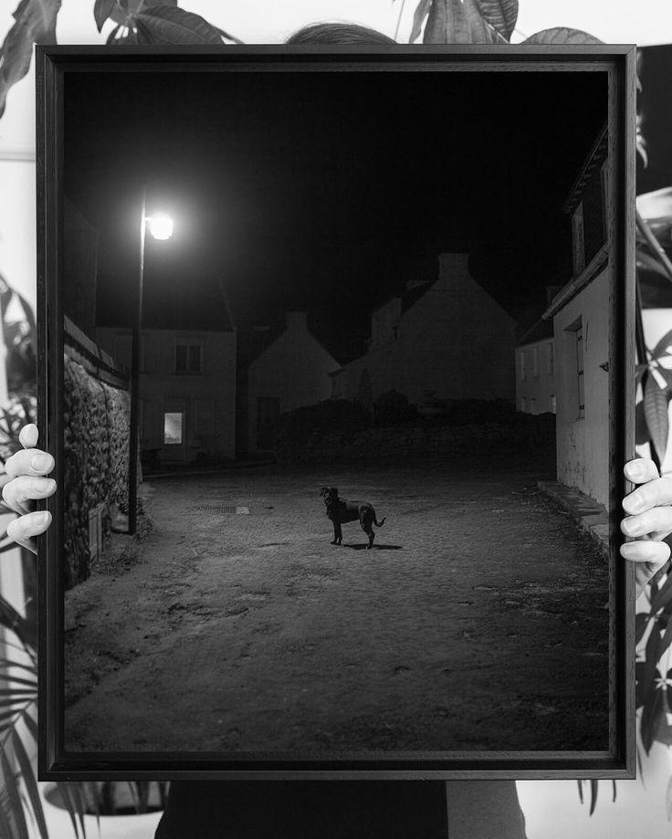 BATZ 1/14 (english below) Un chien dans la nuit à l'Île-de-Batz, dans le Finistère. .. Impression 1 sur 14 exemplaires d'un tirage 40x50 cm limité et signé. 490€ pour le tirage hors encadrement(+60€) ou caisse américaine(comme ici, +185€)). Tiré par...