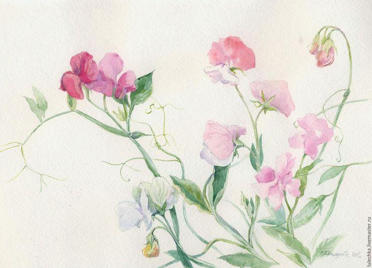 Купить Душистый горошек - комбинированный, душистый горошек, цветы акварелью, акварельный рисунок, рисунок цветов