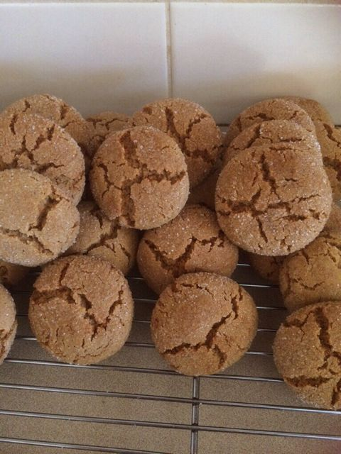 Forum Thermomix - The best community for Thermomix Recipes - Gingersnaps