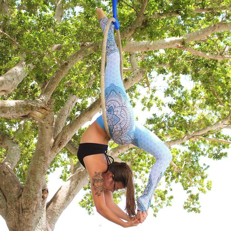Like a tree you have to find your roots and then you can bend in the wind ~ Angela Farmer Yogi: @artsy_blue 💕 #aeriallove #aerialfitness #aerialnation #aerialsilks #aerialnature #aerialyoga #aerials #artofmovement #artoflife #artofvisuals #aerialhoop #aerialist #contortion #flexibilitynation #flexible #stretchingtime #workout #yogaeverywhere #outdoors #outdooryoga #yogaoutside #livefolk #passionpassport #wildernessculture #stronggirl #strongissexy #girlwithmuscles #goodvibbesonly #secodyou…