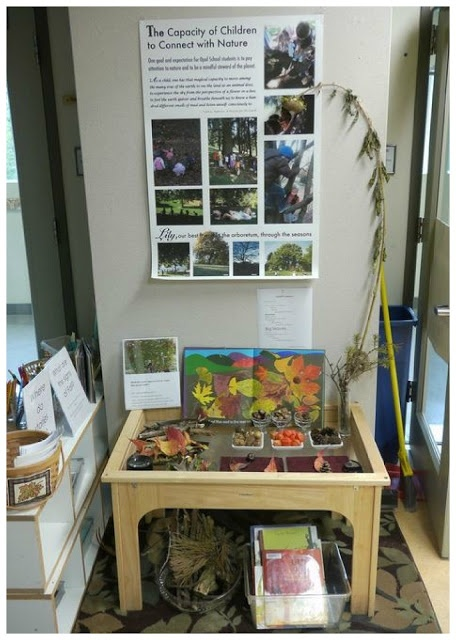 let the children play: Be Reggio Inspired: Indoor Learning Environments