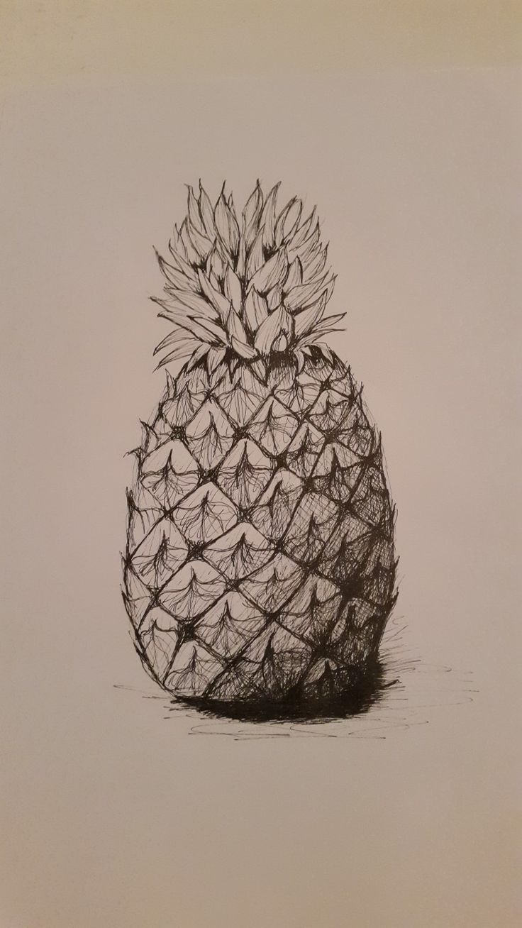 Pineapple in pen