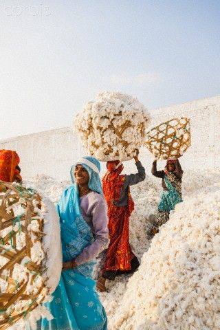 Cotton factory India, Madhya Pradesh (Central Provinces), Bhopal . selecting cotton in a textile factory near the town (via Cotton factory -...