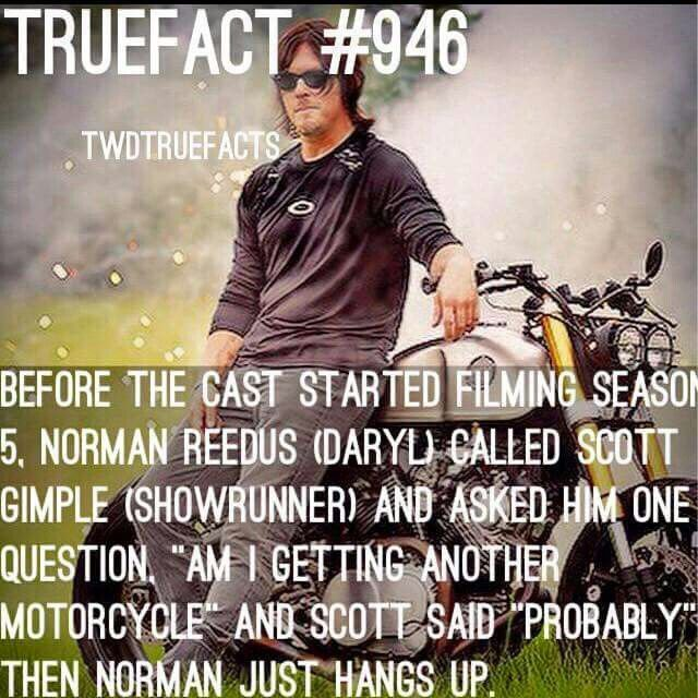 TWD True Fact
