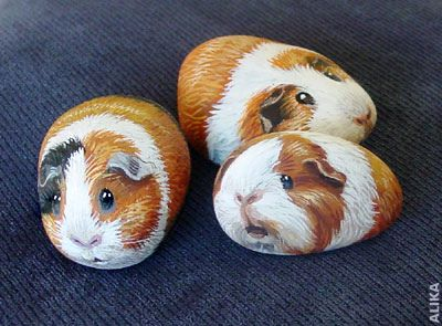 Animal Painted rocks!!! Hand painted rocks. 3 guinea pigs by Alika-Rikki, via Flickr