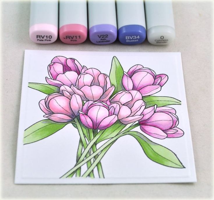 Рисунки цветов поэтапно фломастером