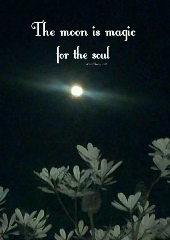 Zitate nacht Gute Nacht