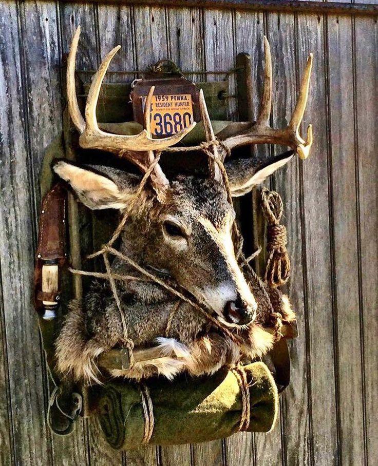 Deer Hunting Decor, Deer Decor, Deer Antler