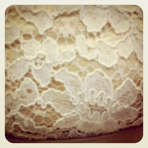 Dimity EcoBride detail:  Vintage corded lace on beetroot-dyed silk sateen