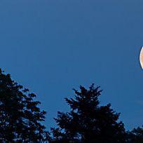 Mondkalender: Was steckt dahinter?