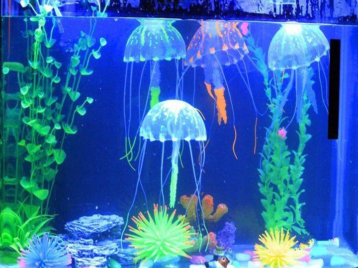 Meduza Swiecaca Ozdoba Do Akwarium Ozdoby 5cm Nowa Fish Tank Plants Fish Tank Decorations Jellyfish Tank