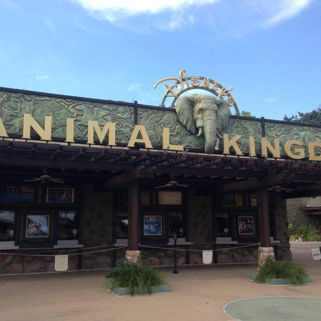 Review of Disney's Animal Kingdom at Walt Disney World in Orlando, Florida, USA by Wilson Travel Blog