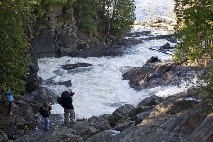 Waterfalls - North — Daytripper Photo