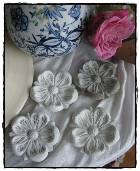 25+ best ideas about blumen rosen on pinterest | rosen, Best garten ideen