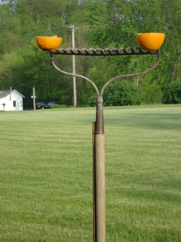 55 best Oriole and Hummingbird DIY feeders images on Pinterest | Bird feeders, Bird houses and ...