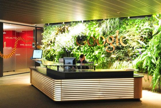 Living wall at Google headquarters! #gardentrends