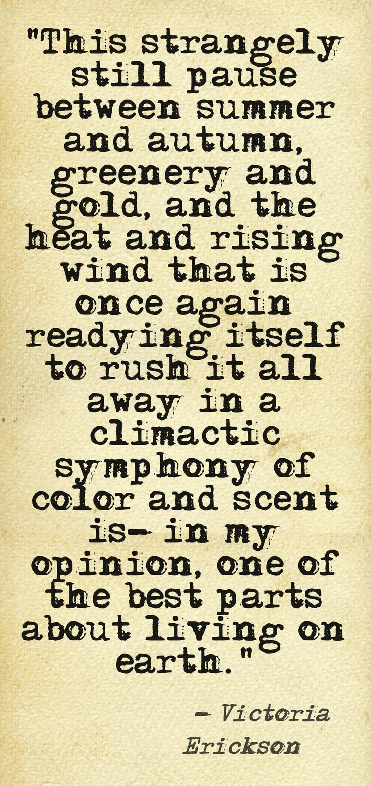 best 25 autumn quotes and sayings ideas on pinterest fall