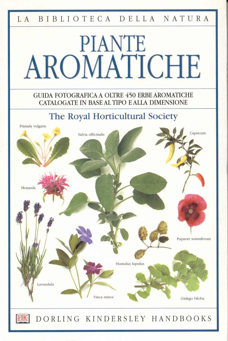 Piante aromatiche - The Royal Horticultural Soc- 1999
