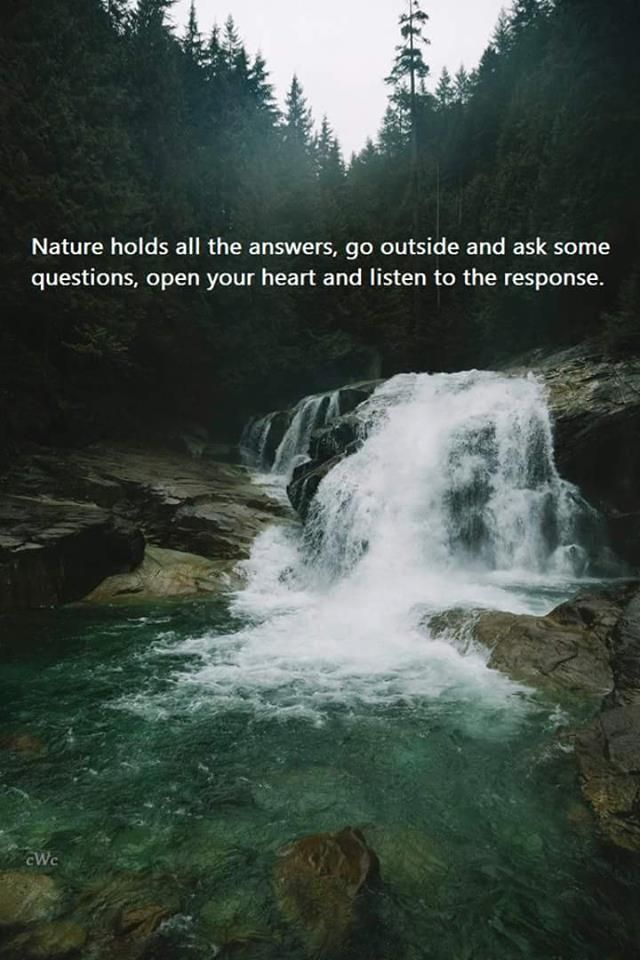 What is the question thats trying to e answered for metaphysics nature of reality?