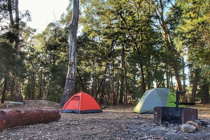 Plantation Campground, one of many free campgrounds in the Grampians National Park in Victoria, Australia. Come check out the photos: http://lostboymemoirs.com/camping-in-the-grampians-national-park/