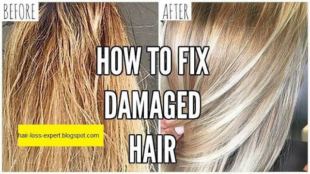 6 Important Tips To Repair Damaged Hair To Life Quickly Keep The Scalp Hair From Home Extremely Damaged Hair Damaged Hair Solutions Damaged Hair