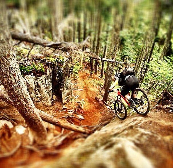 Mountain Bike Please follow us @ http://www.pinterest.com/wocycling/