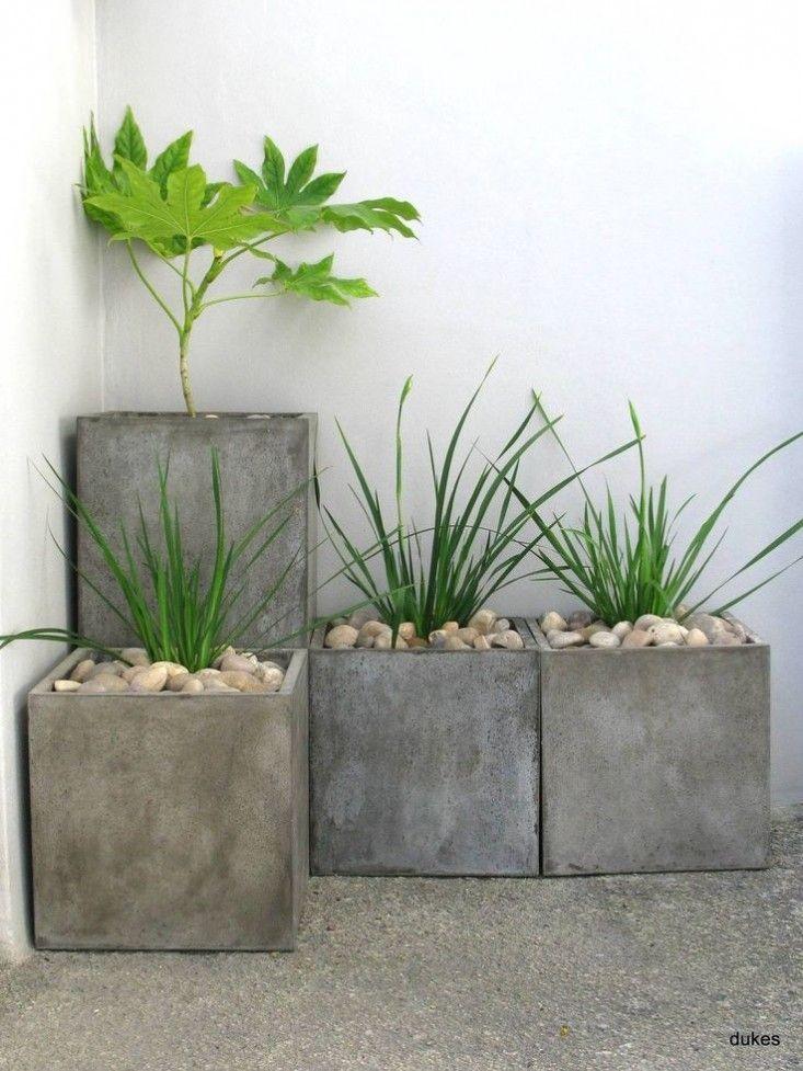 Concrete planters Garden Design Pinterest board ; Gardenista