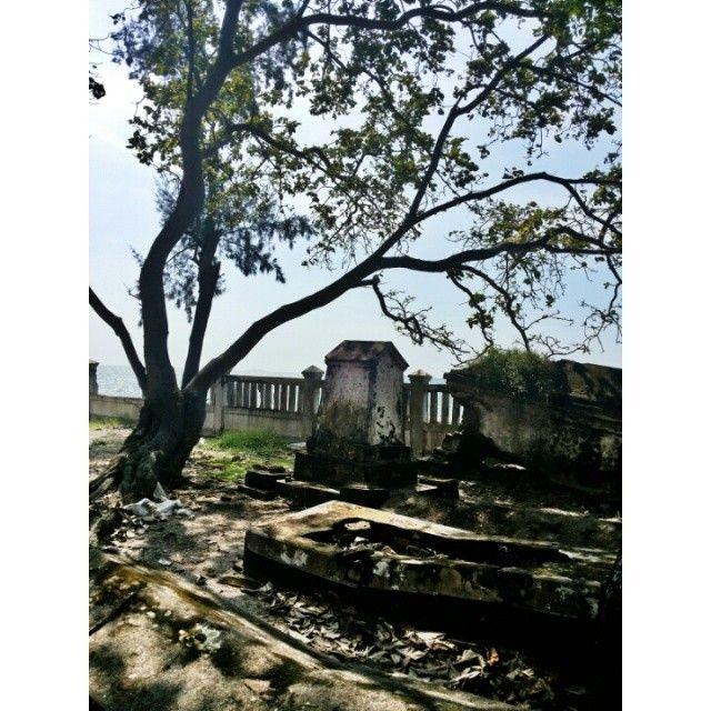 #trip #travel #beach #island #kelor #traveler #traveling #like4like #follow #follow4follow #followforfollow #likeforlike #nature #indonesia #visitindonesia #gytaregi #grave #tree #spooky
