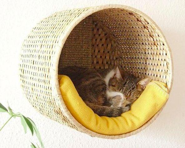 CESTO SONO | sabe aquele cesto de roupa que você acabou não usando no banheiro? Ele pode virar a caminha do seu gato: basta fixá-lo horizontalmente na parede e acomodar dentro uma coberta, deixando o espaço bem fofinho para seu felino repousar. ;) #petbed #diy #petdecor #Tecnisa Foto: Ikea