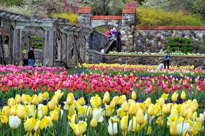 81ff26901b81e9b1e5d4f12a1a01f3ed - Can You Visit Biltmore Gardens For Free