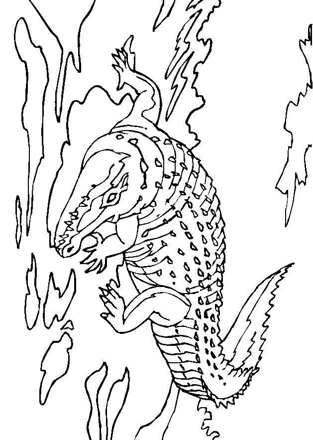 17 beste afbeeldingen krokodil kleurplaat