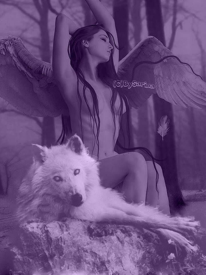 22 best Dark angel images on Pinterest | Dunkle engel, Dämonen und ...