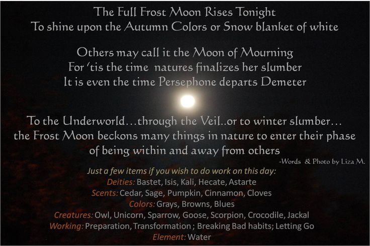November Full Moon - Frost Moon, Mourning Moon, Beaver Moon.  Some even see November as the end of the Celtic Year.  If you do work on this day; here are just a few tools & items to consider.  There are always more; and your path is your own; so do what you feel is right but this can be a guide if you like. BB!