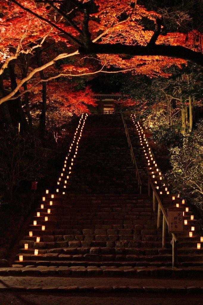 【奈良県】室生寺 【Nara Prefecture】 Muro-ji Temple