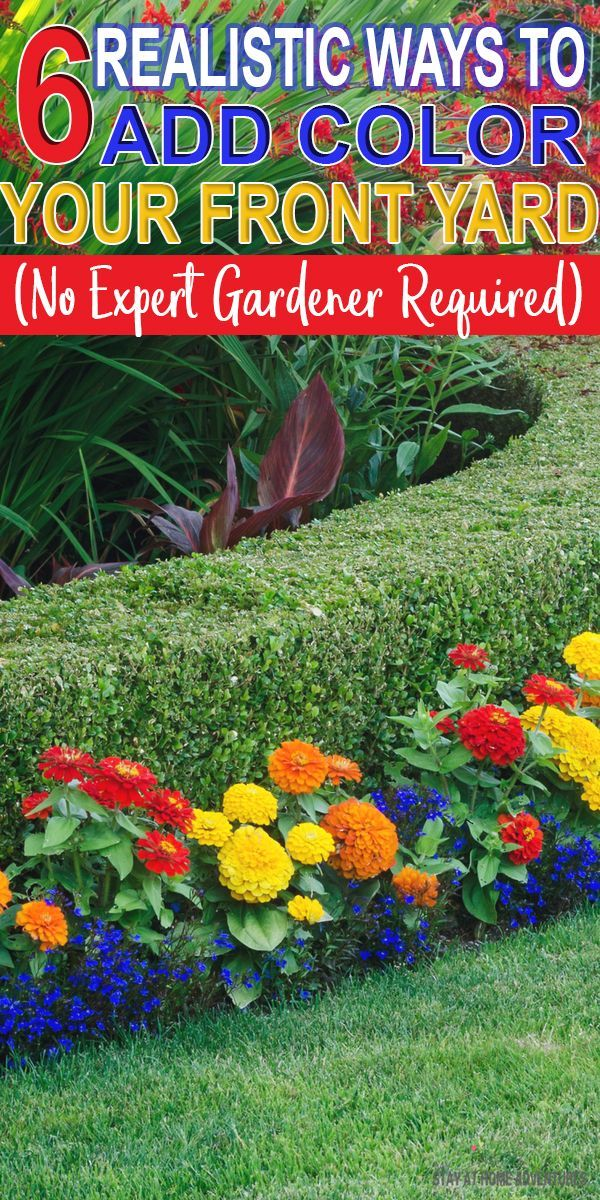 Learn How To Add Color To Front Yard Landscaping That Is Affordable And Realistic These Six Landsc Colorful Landscaping Landscaping With Rocks Landscape Plans