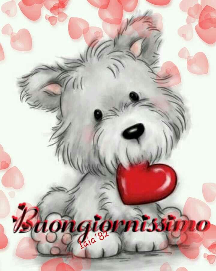 Buongiornissimo buongiorno cane cucciolo cuore