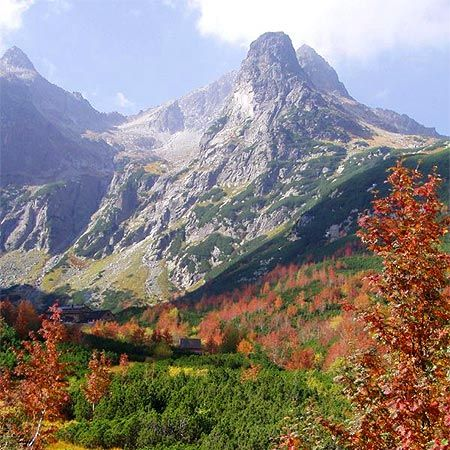 This is how gorgeous Zakopane, Poland is during the fall. I absolute love hiking there!