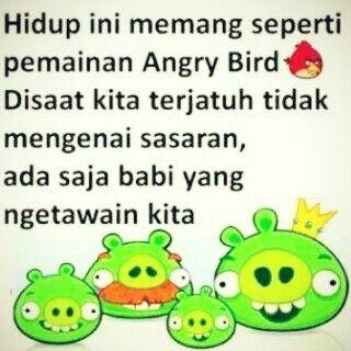 Angry bird VS Babi