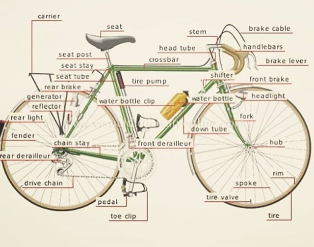 Bicycle Dictionary Vintage Cycling Passion Archives